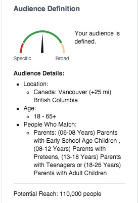 facebook ad audience example