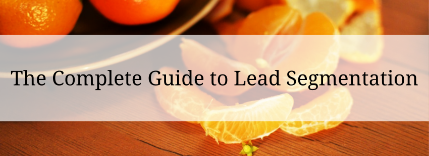 The Complete Guide to Lead Segmentation
