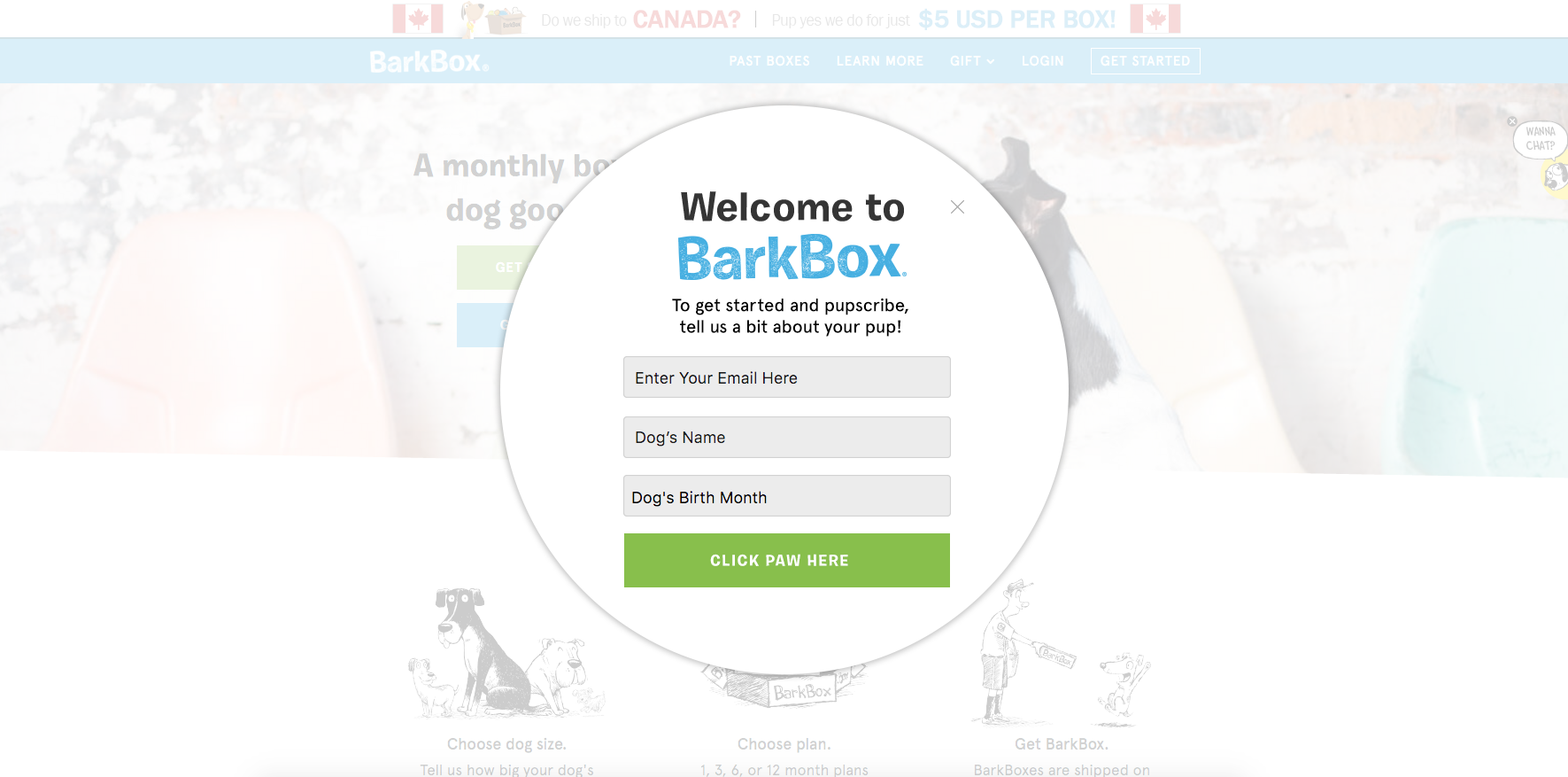 barkbox pop up