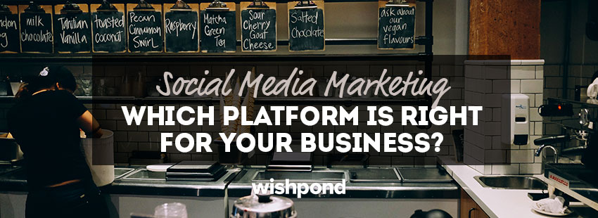 Social Media Marketing Platforms: Which one's right for your business? (Updated 2017)