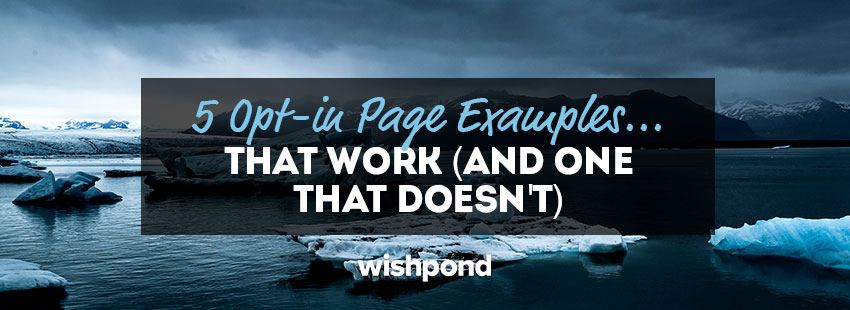 5 Opt-in Page Examples that Work (and 1 That Doesn't)