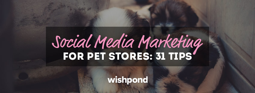 Social Media Marketing for Pet Stores: 31 Tips