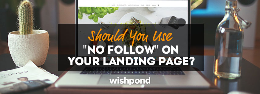 "Should You Use ""No Follow"" on Your Landing Pages?"