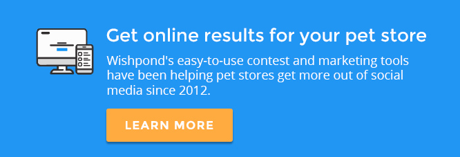 Here Are 7 Platforms And 31 Tips To Improve Your Social Media Marketing For  Pet Stores.