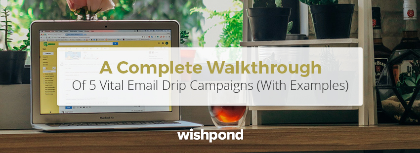 5 Effective Email Drip Campaign Examples To Learn From